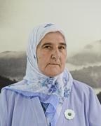 Carnegie Council 2014 Bosnia Visit