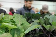Eat Local and Organic Expo - KC, Missouri