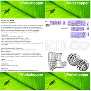 Workshopper [Workshop+Grasshopper]