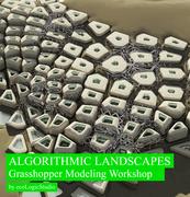 Algorithmic Landscapes Workshop