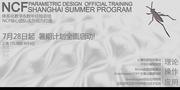 NCF official parametric design  training-Shanghai summer program