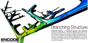 Branching Structure Workshop