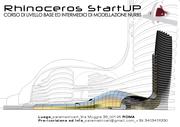 Rhinoceros StartUp
