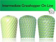 On Line Intermediate  Grasshopper