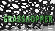 Introducción a Grasshopper 101 Online (Español)
