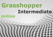 Intermediate Grasshopper Online [ Mornings ]