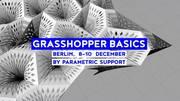 Grasshopper Basics