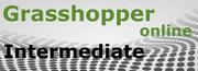 Intermediate Grasshopper Online at McNeel Online