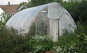 Extending the Season: Backyard Bioshelters for Fruit, Fish & Fun