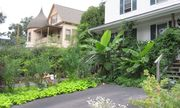 Edible Forest Gardens: Living Sustainably in the City