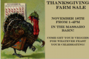 Pre-Thanksgiving Sale