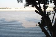 Tigris in Baghdad 2011