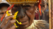 Paupa woman