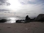 Pasir Panjang Palm Beach
