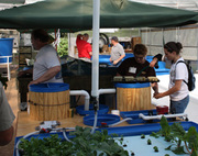 2-day Aquaponics and Controlled Environmet Agriculture Workshop