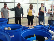 3 Day - In Depth Aquaponics and Controlled Environment Workshop