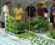 Aquaponics and Controlled Environment Agriculture – 3 days