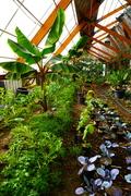 Greenhouse Design Workshop