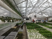 The Aquaponic Farming Course