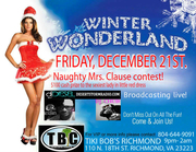 Dj Diesel and Dj Chub Winter Wonderland Bash