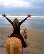 Women and Horses -Refresh!