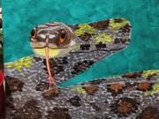 100 Flower Rat Snake