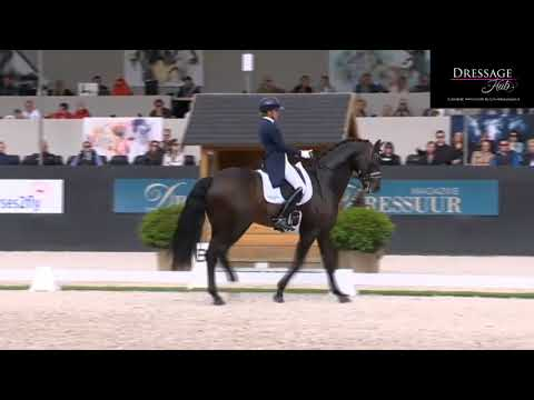 Emmelie  Scholtens And Apache Grand Prix Freestyle 80%