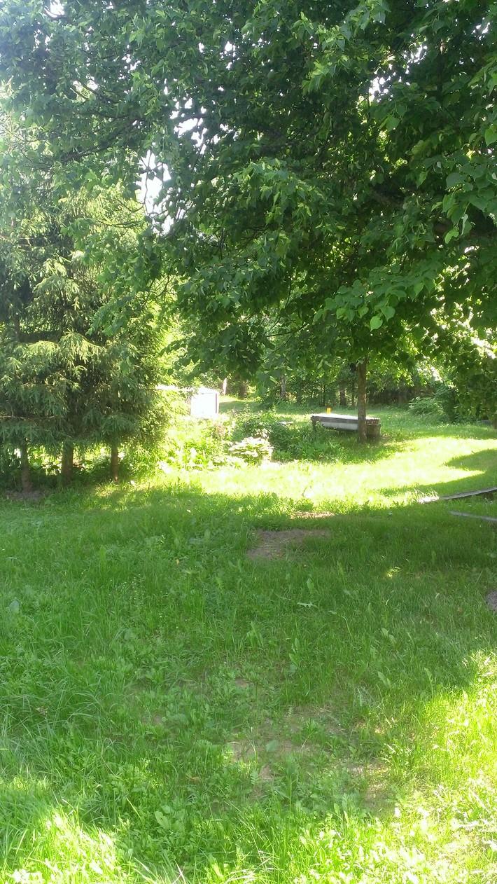 Лужайка у дома