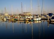 Princeton Harbor