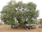 Burkina Faso Orality Training