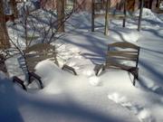 Snow Decks