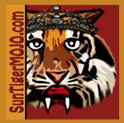 a-stm-tiger