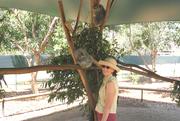 Australia - Arleen and koala