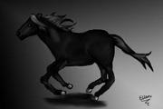 svart galopperande häst.....