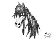 grå, svart o vit häst