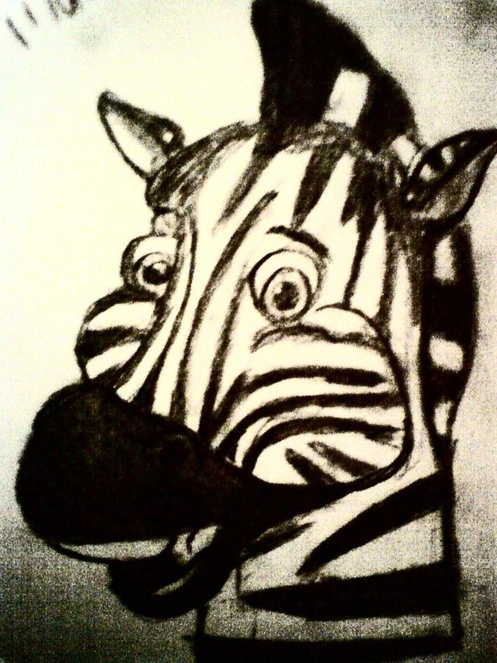 zebra huvud
