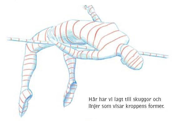 tmänHöjd6