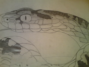 serpiente =)