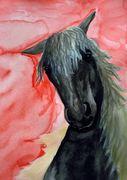 Equus4