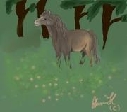 Häst!