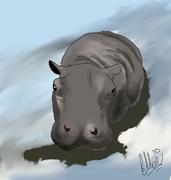 Flodhäst 1