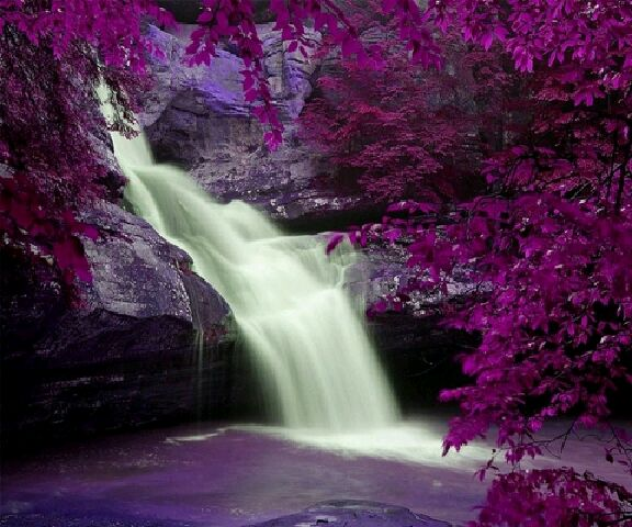 wallpapers_Dream Fall_15