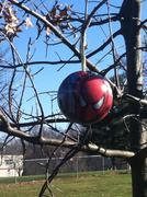 Tim's Tree with Spider-Man Christmas Ornament