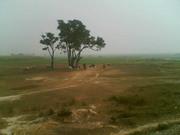 a Village morning
