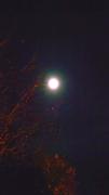 Sechelt full moon #2