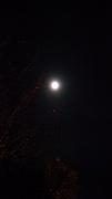 Sechelt full moon