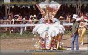 Trinidad Carnival 1969
