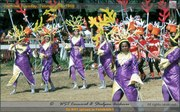 Life in the Waters - Trinidad Carnival 1969