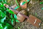 2 string Cello