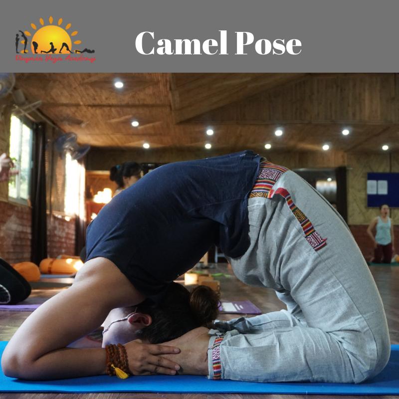 Yoga Teacher Training Course in Rishikesh